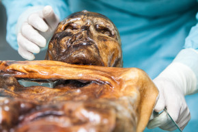 """Iceman"" Mummy Reveals Secrets About Ancient Europe"