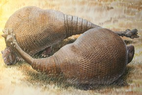 Giant Prehistoric Armadillos Were Actually A Thing