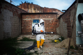 Zika Virus And How Sports Spread Disease