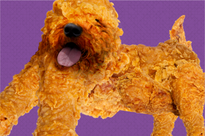 Would You Eat A Dog? What If It Looked Like Fried Chicken?