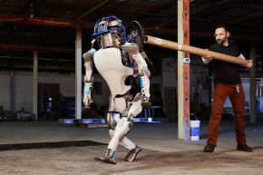 Watch A Robot Get Hilariously Bullied At Work