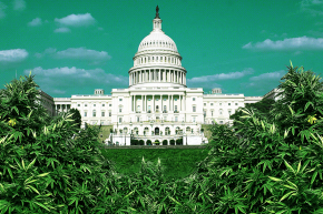 Congress Has Talked About Pot At Least 4,238 Times Since 1996
