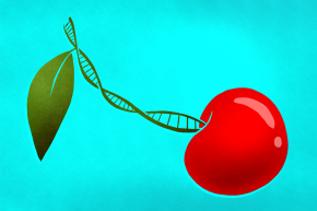 DNA Can Now Tell Us When You'll Lose Your Virginity