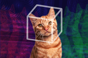 A Trippy Theory About Dead Cats Could Change Quantum Physics