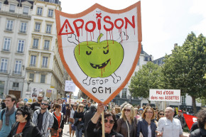 GMO Denial Is A Religion, Not A Science