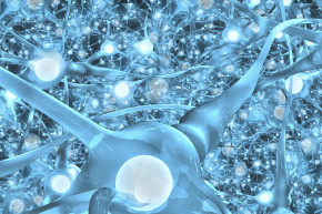 Studying Human Neurons To Build Smarter Robots