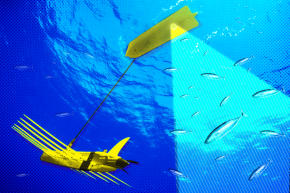 A Sea Drone That Hunts Illegal Fishers