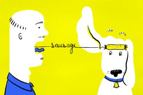 Your Dogs Understands More Of What You're Saying Than You Think