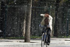 Climate Change Will Make Allergy Season More Unbearable