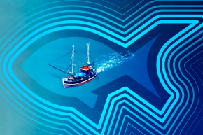 Track Illegal Fishing Operations From Your Computer