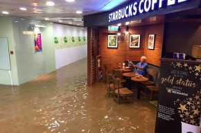 Man Chills In Flooded Starbucks And Becomes Meme Hero