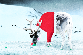 How Reindeer Are Slowing Global Warming (Not By Flying Us Our Presents, Sadly)
