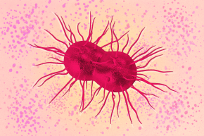 Scientists Are Developing A New Antibiotic For Gonorrhea