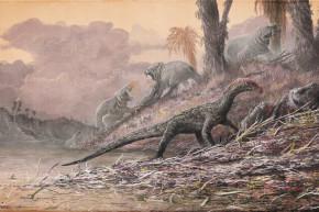 Ancient Crocodile-Like Beast Causes Rethinking Of Dinosaur Evolution